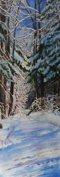 Algonquin Winter