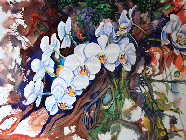 Paintings of Canadian wild and domestic flowers for sale created by Brenda Beattie