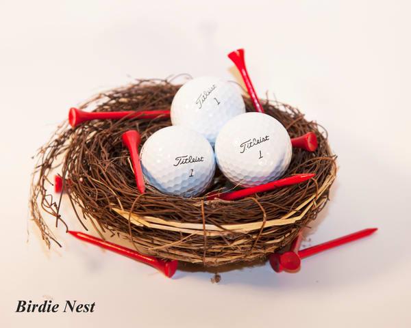 Birdie Nest