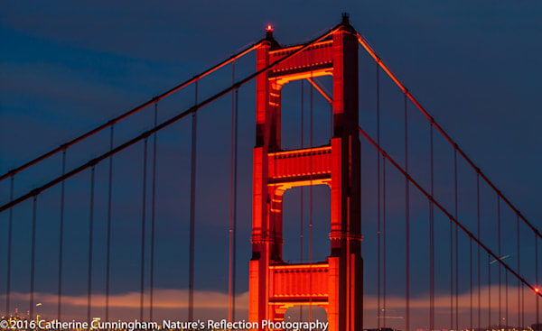 Golden Gate Face