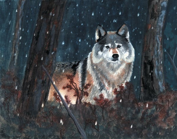 Winter Wolf Art | Blissful Bonita Art Studio & Gallery