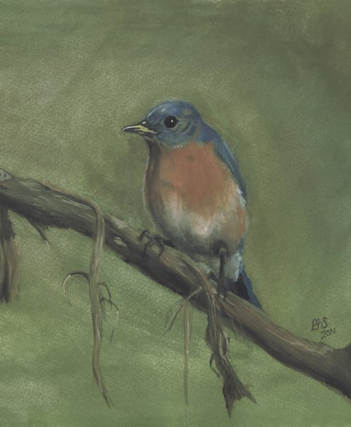Bluebird Back Home Vertical Art | Blissful Bonita Art Studio & Gallery