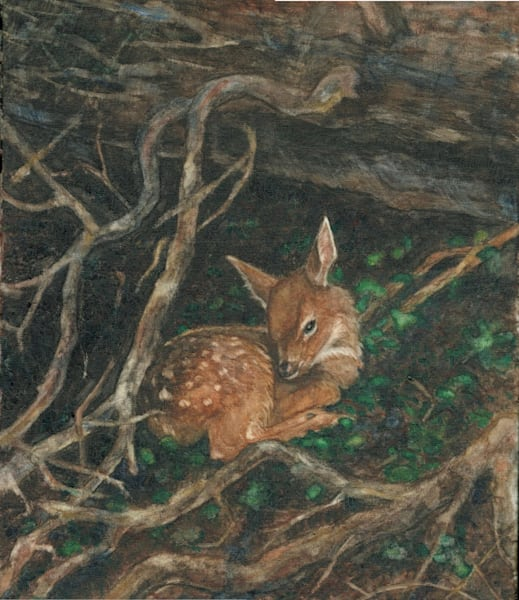 Fawn Scanned Art | Blissful Bonita Art Studio & Gallery