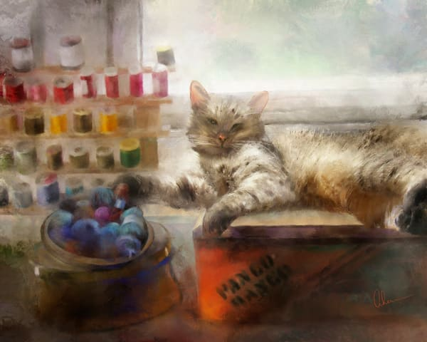 Art print of Marco the cat laying in the sunshine of the Craft Room by the Artist, Mary Ahern