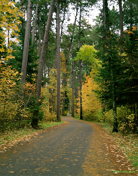 Fall Wilderness Drive Itasca State Park