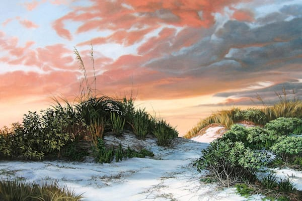 Beach Dunes with Sea Oats print  | Kevin Grass Fine Art