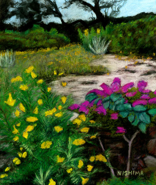 Hill Country Backyard Flowers