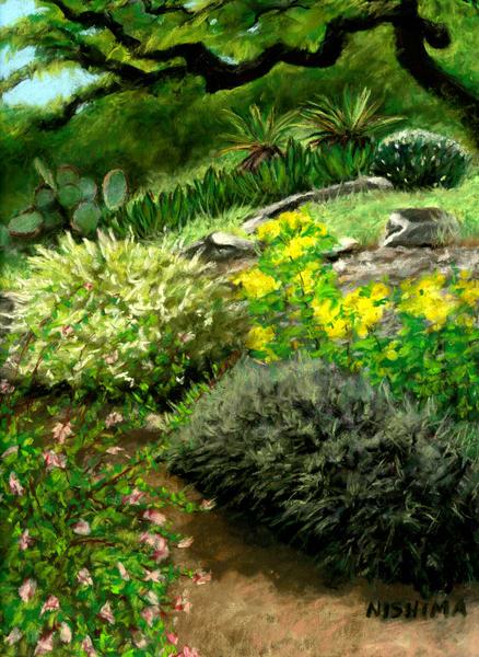 Hill Country Garden