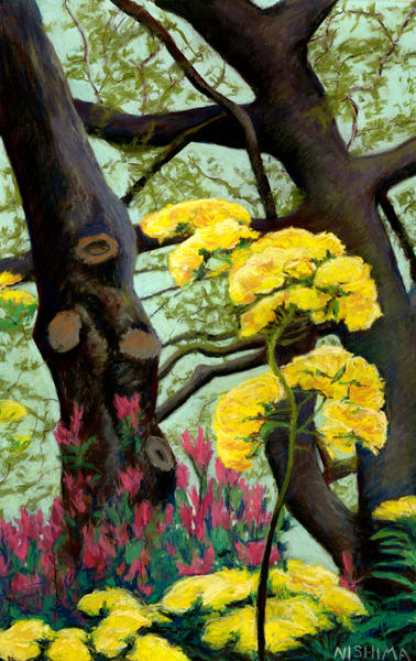Oak Trees and Flowers