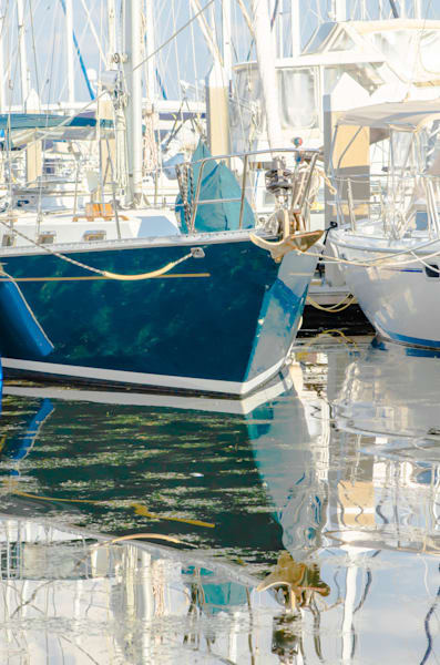 Boats anchored at marina ready to sail photography
