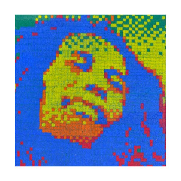 Marley Pixels 12 by 12