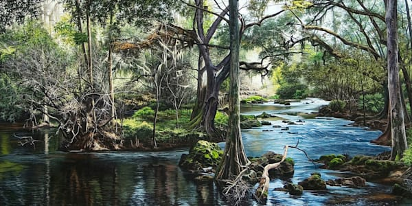 Hillsborough River nature print | Kevin Grass Fine Art