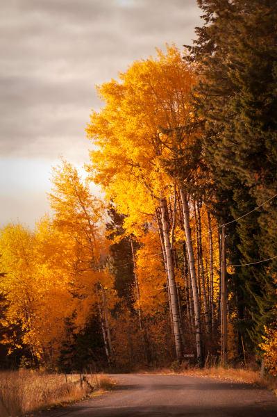 A Road Home fine art photograph