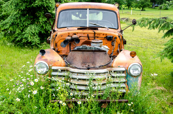 Rustinc old orange truck in green field with flowers
