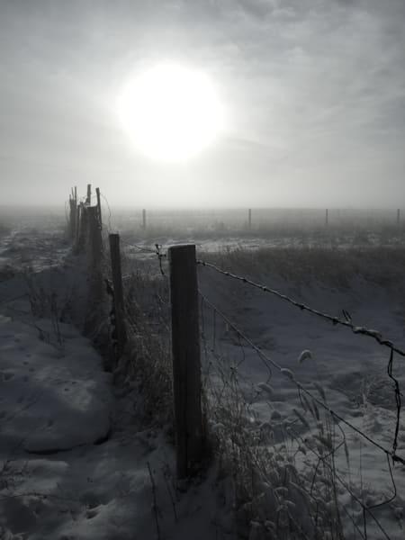 Foggy Morning Fence