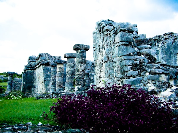 Purple Ruins