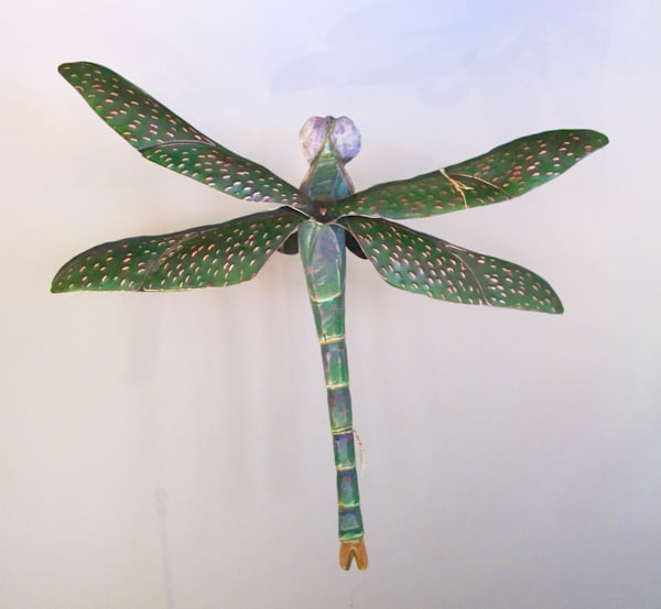 darkgreen dragonfly