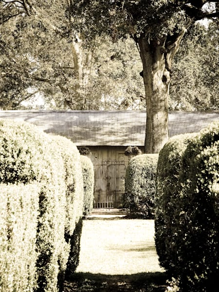 Hedge Path
