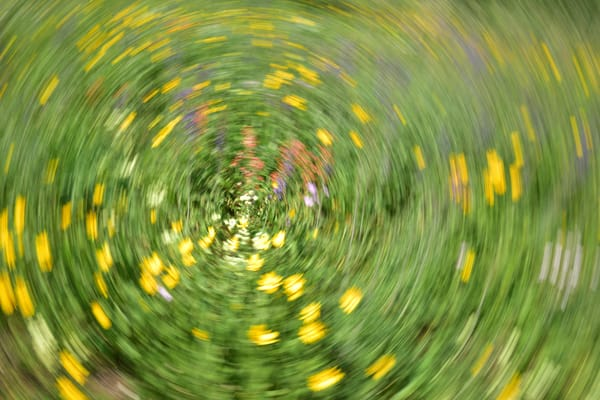 Impressionistic Photographs - Motion Blur Dancing in Fields of Wild Flowers - Fine Art Prints on Metal, Canvas, Paper & More By Kevin Odette Photography