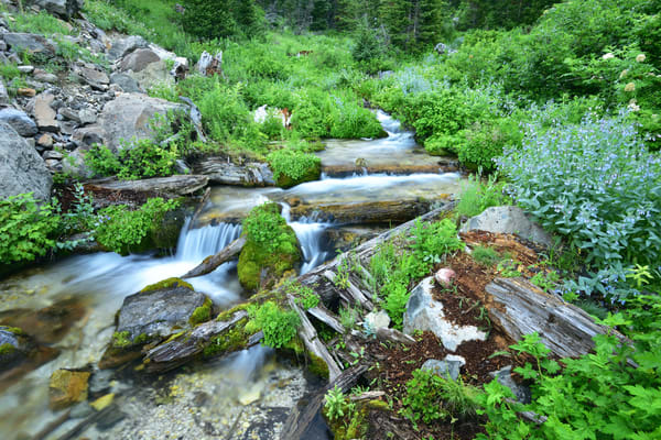 Peaceful Anticipation - waterfalls hidden in the Grand Teton Range, Wyoming - Fine Art Prints on Metal, Canvas, Paper & More By Kevin Odette Photography