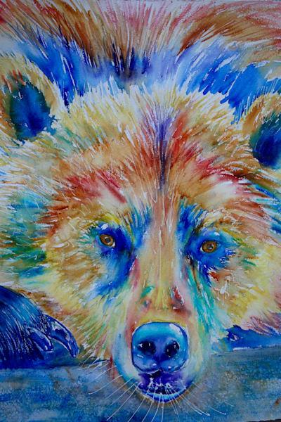 Koda the Bear