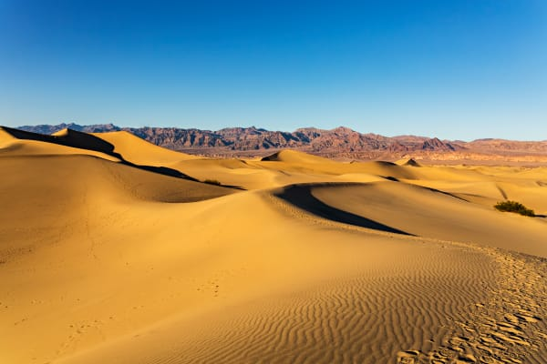 Golden Sand Dunes In Death Valley Photograph For Sale As Fine Art