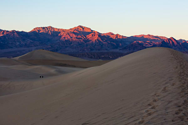 Sunset Over Mesquite Flat Dunes Photograph For Sale As Fine Art