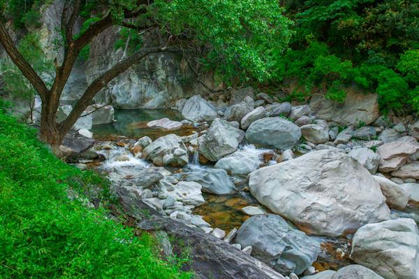 Living Waters 1