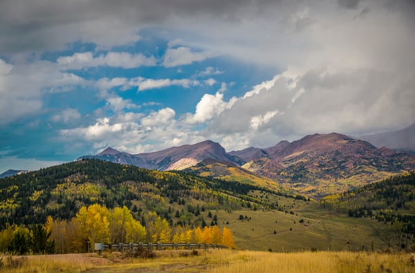 Landscape Photo of Fall Colors in Colorado's Pike National Forest
