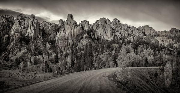 B&W Panoramic Photo Gold Camp Road Pike National Forest