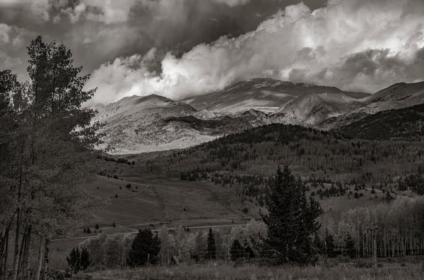 Black & White Photo Fall Colors Colorado's Pike National Forest