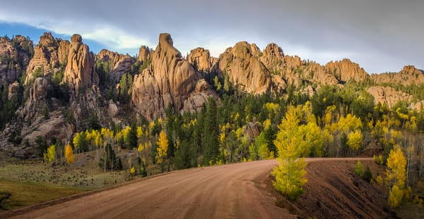 Panoramic Photo of Fall Colors Gold Camp Road Pike National Forest