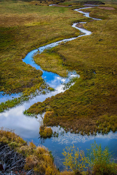 Photo of Blue Sky Reflecting in Stream off Gold Camp Road in Pike National Forest