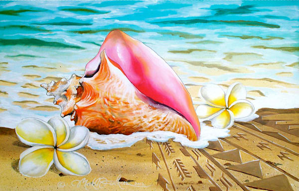 Mark Faulkner | Conch Shell