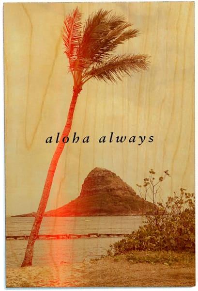 Birchwood Postcards | Aloha Always