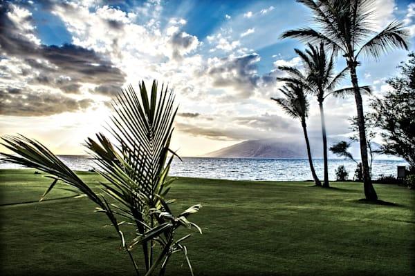 Waui Maui