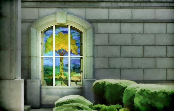 Tree Of Life Photography Art | reflectedpixel