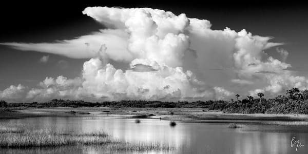 Constance Mier Photography - Everglades prairies
