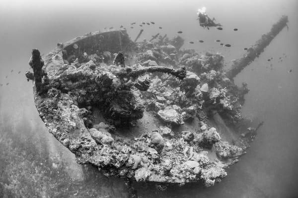 Kashi Maru Shipwreck Bow, Solomon Islands