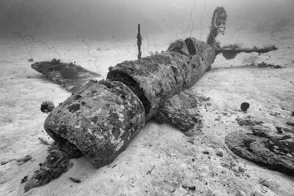 Corsair Fighter Plane Wreck, Solomon Islands