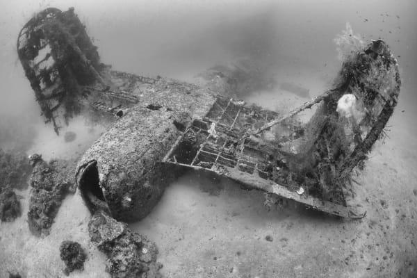 Mavis Plane Wreck Tail, Solomon Islands