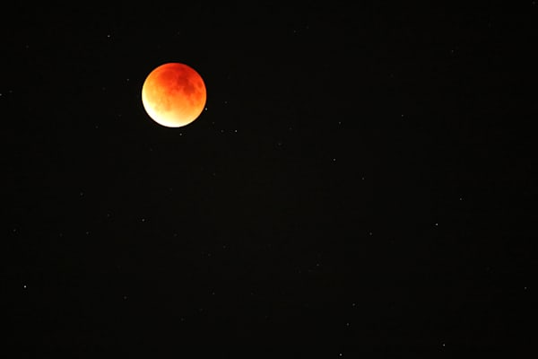 Lunar Eclipse Red Moon Photograph by Steven Archdeacon.
