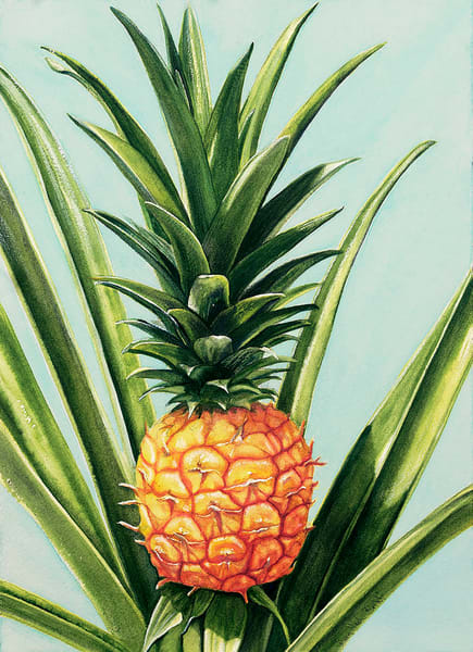 Welcome pineapple art prints by / Colleen Nash Becht