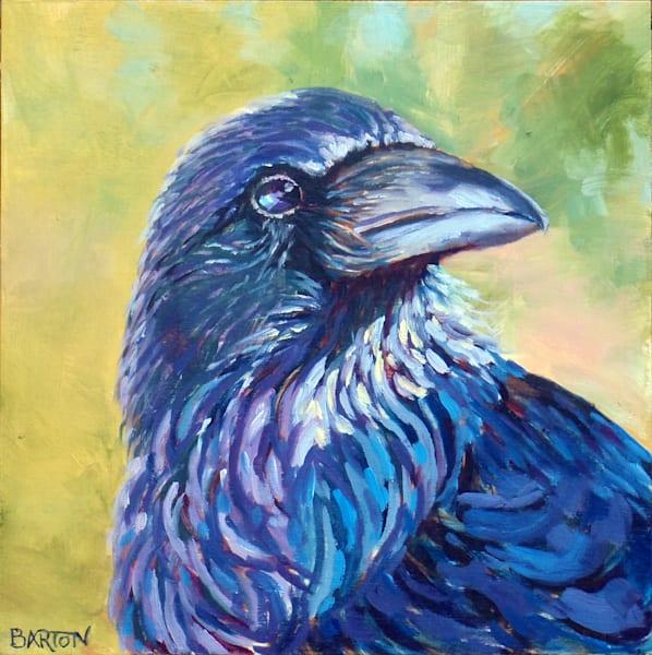 raven, shadow, light