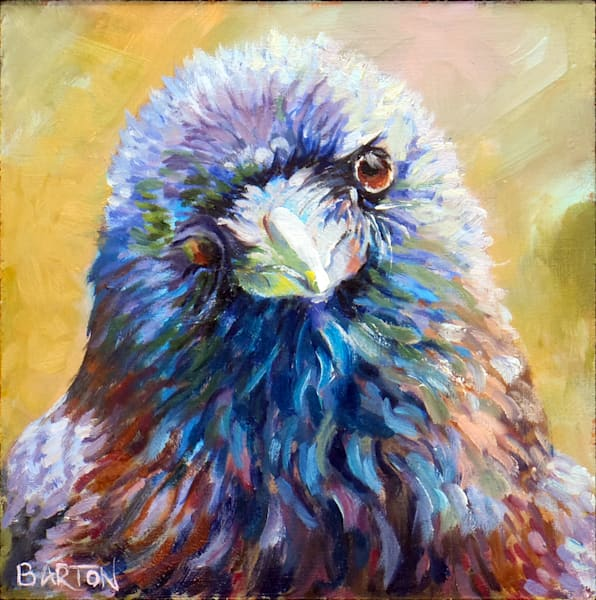 raven, front, colorful