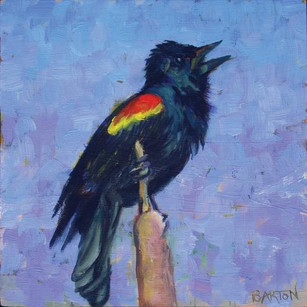 black, bird, red, wing, yellow, sing