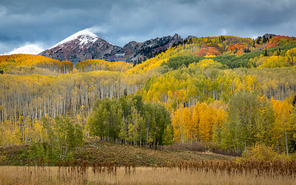 Autumn Splendor In The Rockies for sale as fine art photograph by Mike Jensen