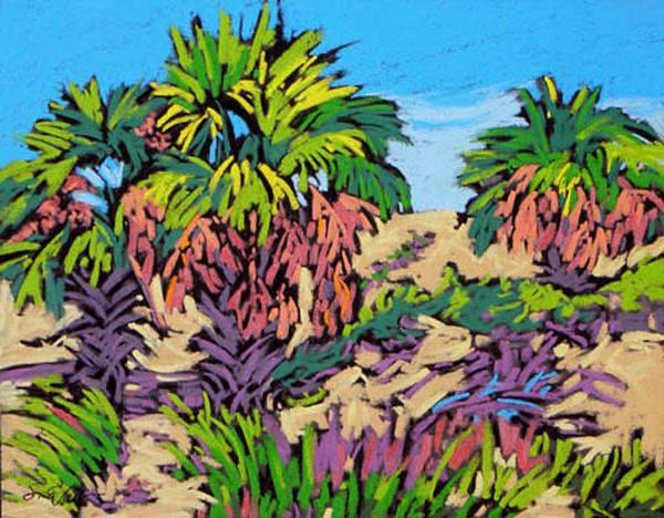 Indian Pass Palms