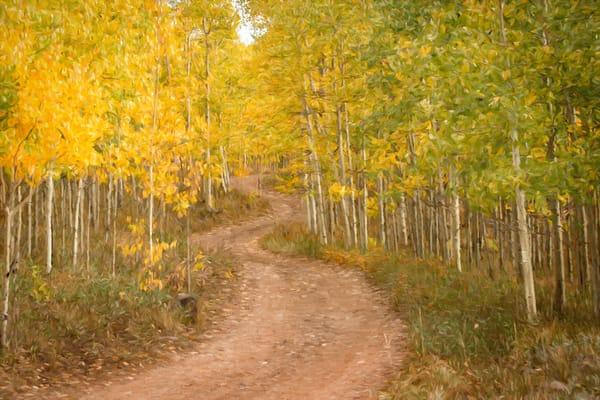 Aspen Ridge Road