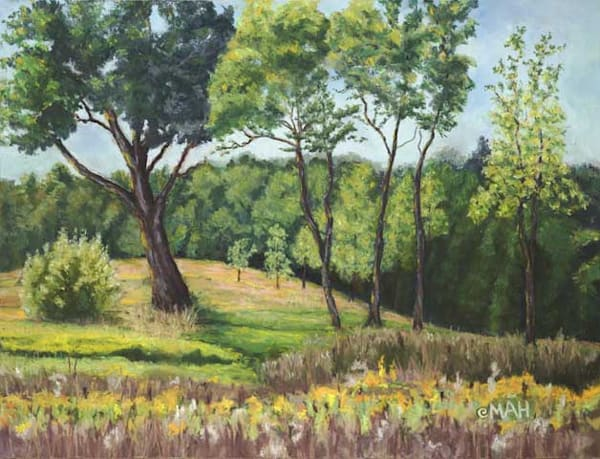 Door County Clearing print by Mary Anne Hill.